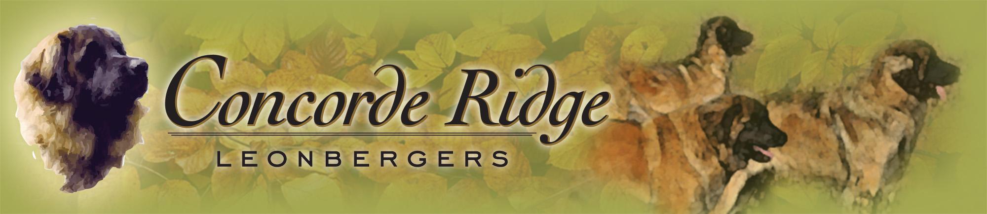 Concorde Ridge Leonbergers